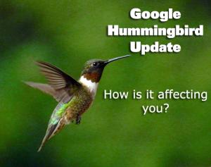 Hummingbird Seo algorithm
